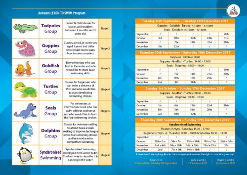 Brochure-03-w800-h600